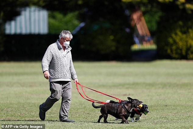 Ligji i ri: Gjermanët duhet të shëtisin kafshët shtëpiake dy herë në ditë