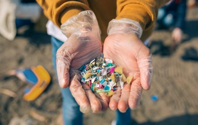 Të dëmshme për shëndetin, grimca plastike zbulohen për herë të parë në organet njerëzore