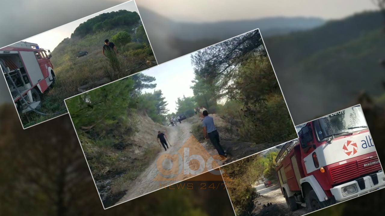 Tre bashki prej 5 ditësh në luftë me flakët, kryebashkiaku i Mallakastrës: Në terren 62 punonjës