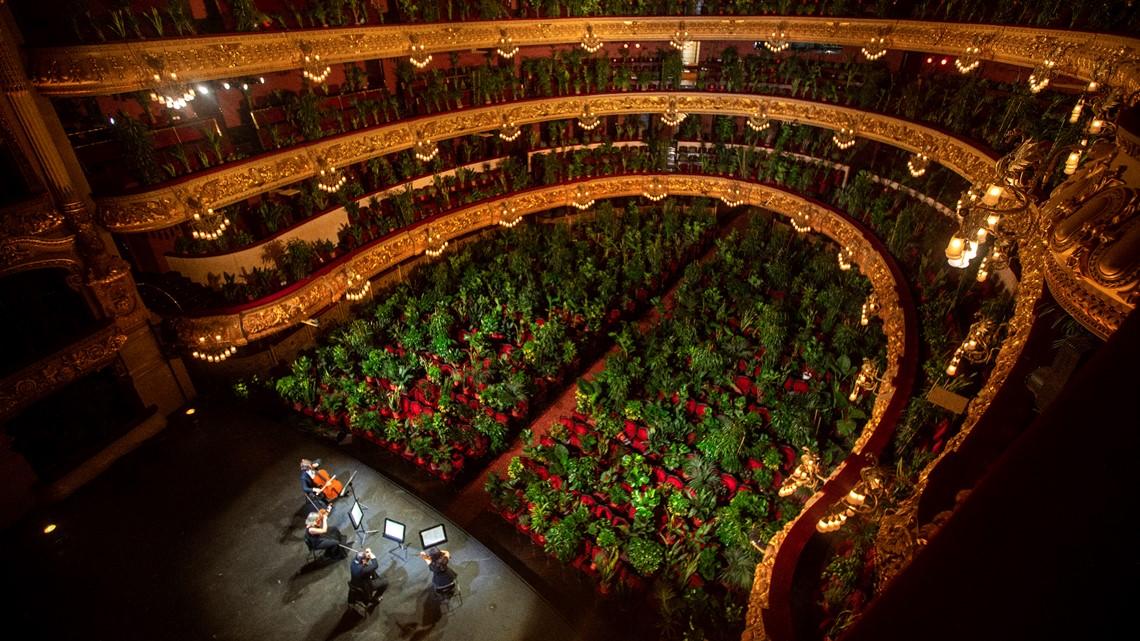 E pazakontë, spektatorët  në koncertin e operas në Barcelonë zëvendësohen me 2000 bimë