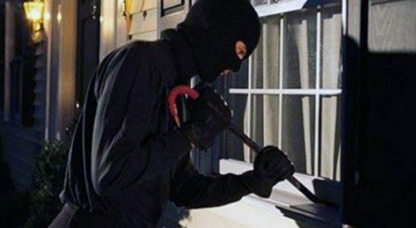 Vjedhje parash dhe banesash, dy të arrestuar në Lushnje e Korçë