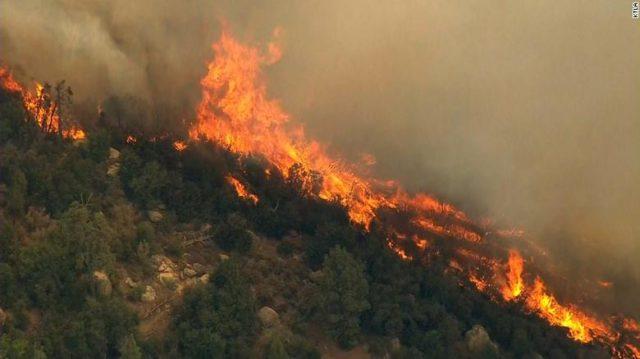 I vuri zjarrin një zone të pyllëzuar, arrestohet 57-vjeçari në Pukë