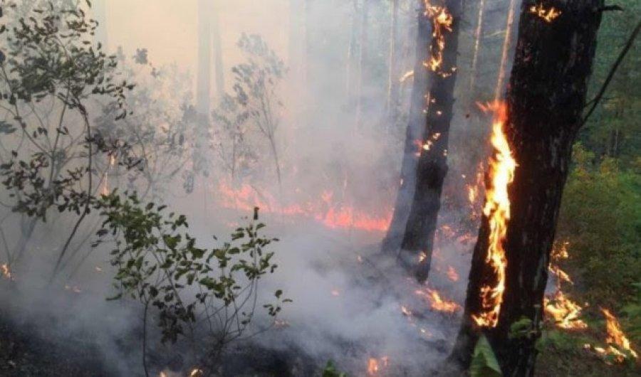 Zjarr në vargmalet e Skënderbeut, zjarrfikësit e kanë të pamundur të ndërhyjnë