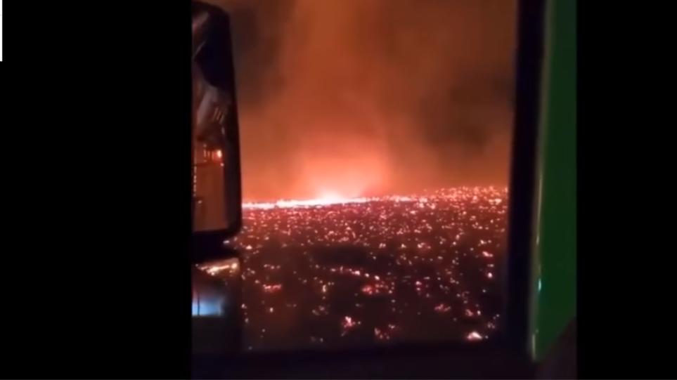 """Pamje apokaliptike,  zjarret në Kaliforni shkaktojnë """"tornado flakësh"""""""