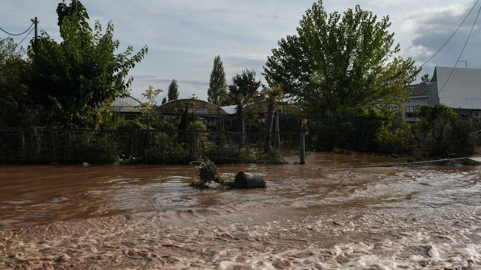 FOTO+VIDEO/ Shënohen tre viktima nga cikloni në Greqi