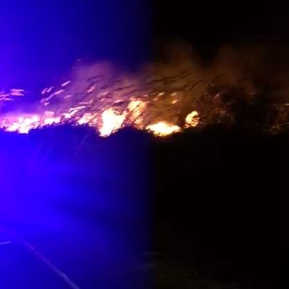 Zjarr i madh gjatë natës në Zvërnec të Vlorës