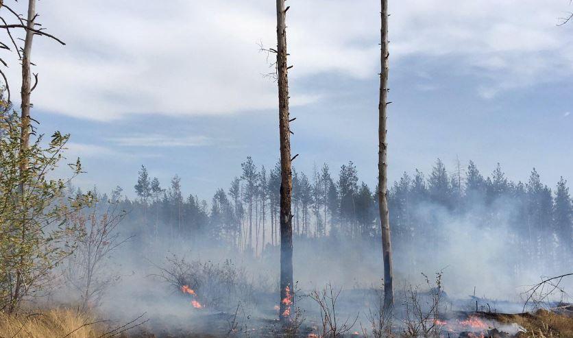 Zjarre masive në Ukrainë, 4 të vdekur
