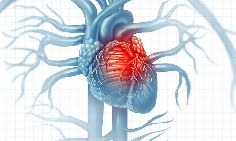 Dieta që zvogëlon rrezikun nga sëmundjet kardiovaskulare