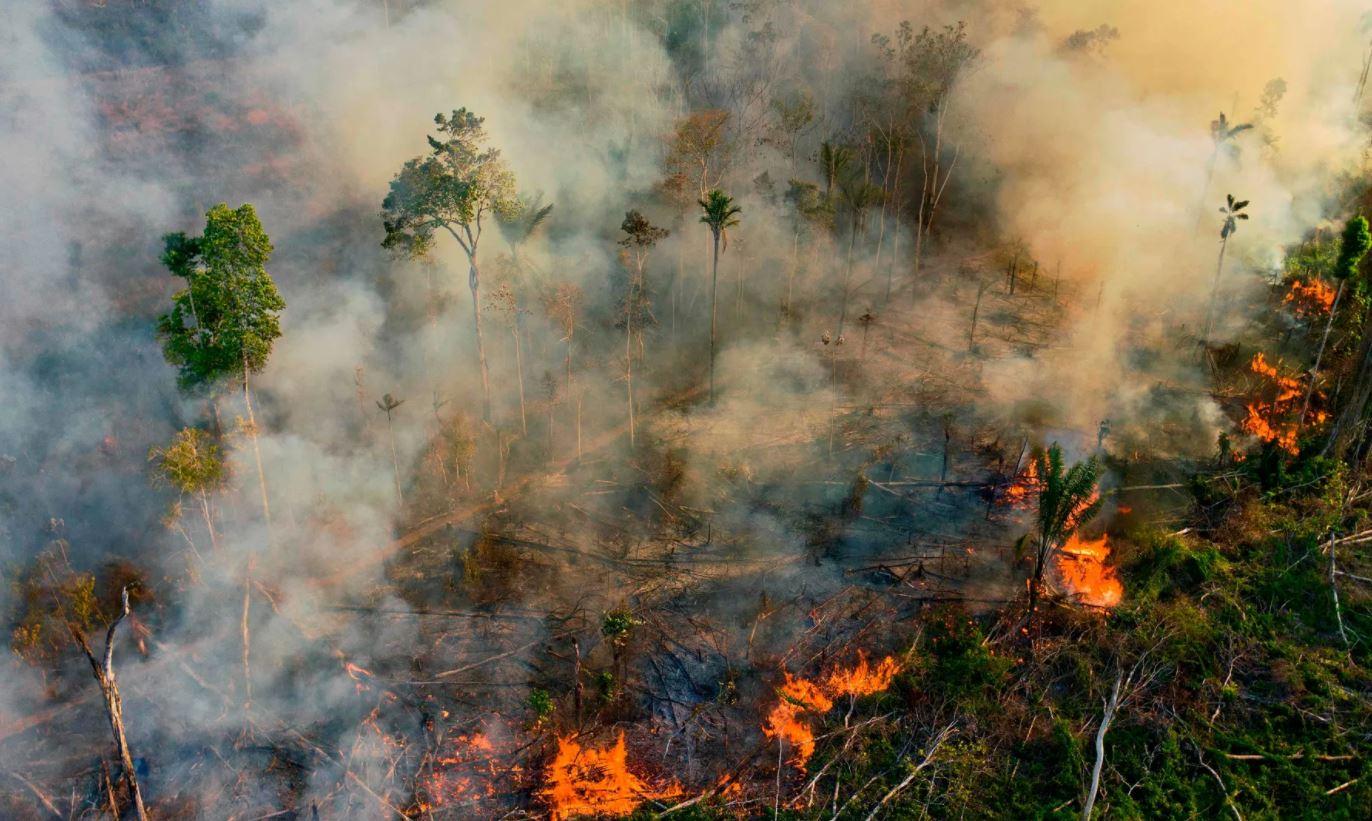 """""""Brazili po digjet"""", ekspertët: Situata mund të përkeqësohet nëse vijon thatësira"""