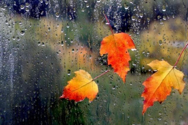 Java nis me vranësira dhe reshje shiu, Meteorologia: Si do ndryshojë moti gjatë ditëve në vijim