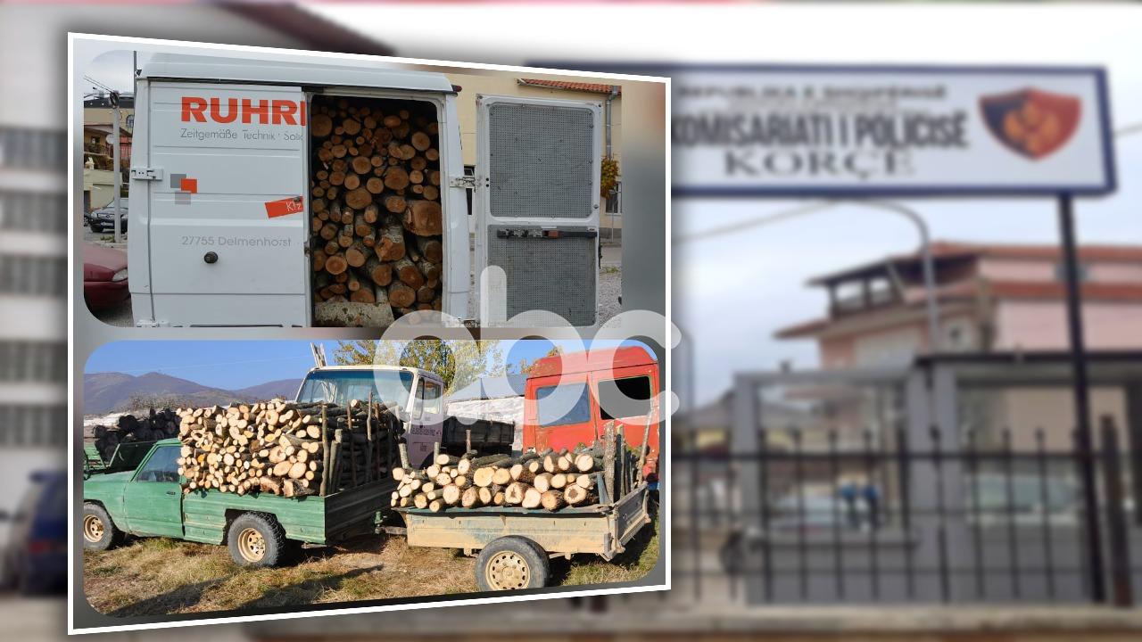 Prerja e paligjshme e pyjeve, procedohen 9 persona në Korçë