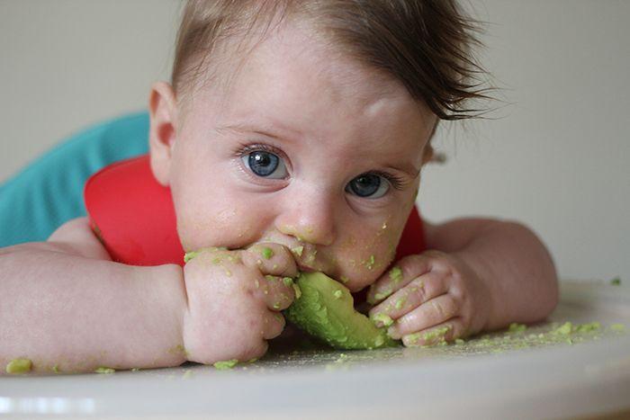 Pse duhet të fillojë bebi juaj avokado pas muajit të gjashtë të jetës