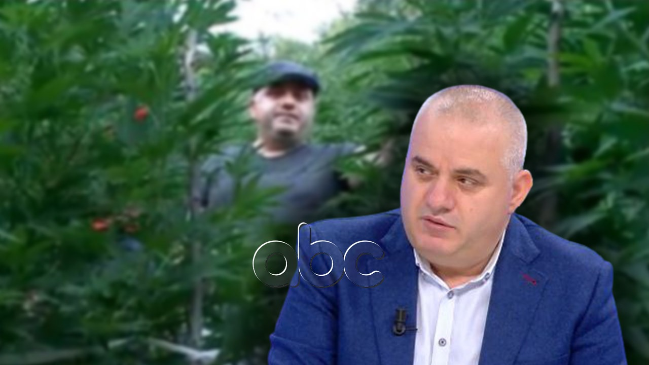 """Dosja e Skraparit, Artan Hoxha: """"Peshqit"""" e mëdhenj të lirë, zgjedhjet do të rrisin kultivimin"""