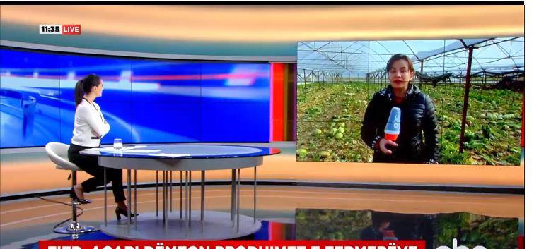 Ngrica dëmton prodhimet e fermerëve në Fier