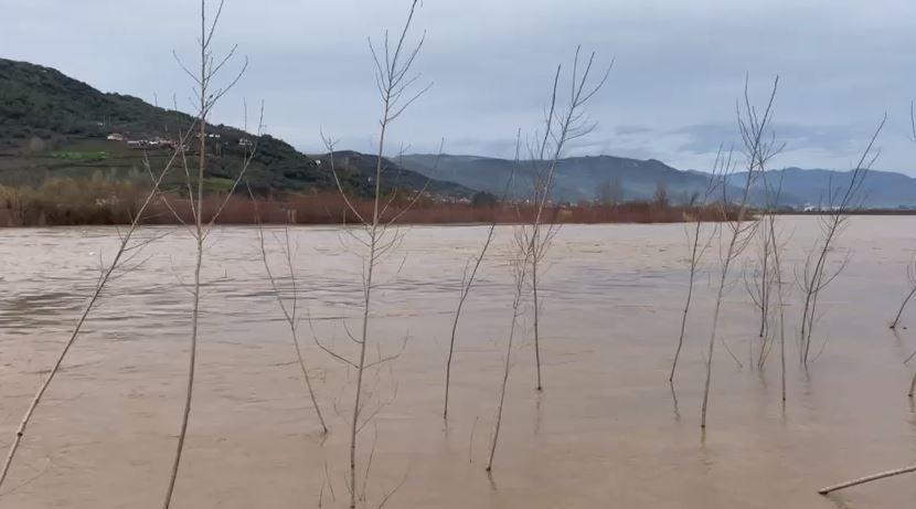Shkumbini del nga shtrati, Braçe thirrje: Banorët e zonave buzë lumit të largohen menjëherë!
