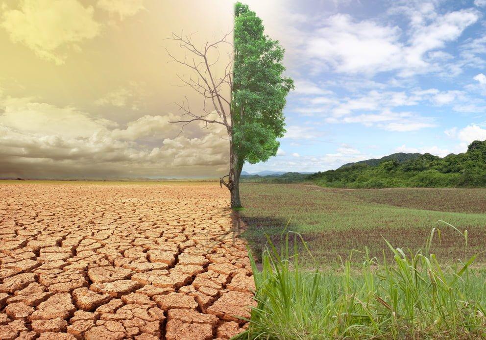 Eurostat: Ndryshimet klimatike po ndikojnë keq bujqësinë edhe në Shqipëri
