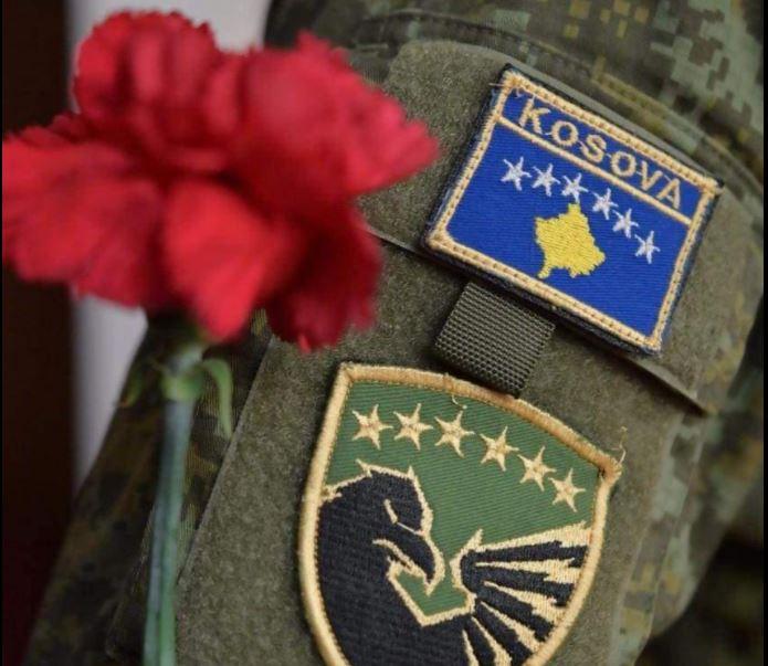 FSK pjesë e misioneve paqeruajtëse, Meta: Kosova e meriton plotësisht të jetë anëtare e NATO-s