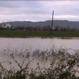 Lumi Ishëm del nga shtrati, përmbyten gjatë natës disa fshatra në Fushë-Krujë