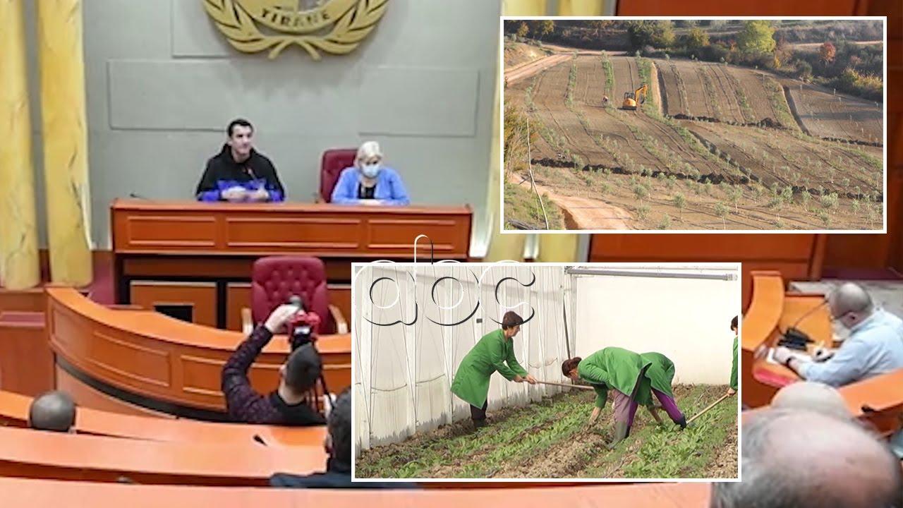 Fermerët afat deri në 25 shkurt për të marrë naftë të lirë, Ekonomi: Aplikimi do të bëhet online