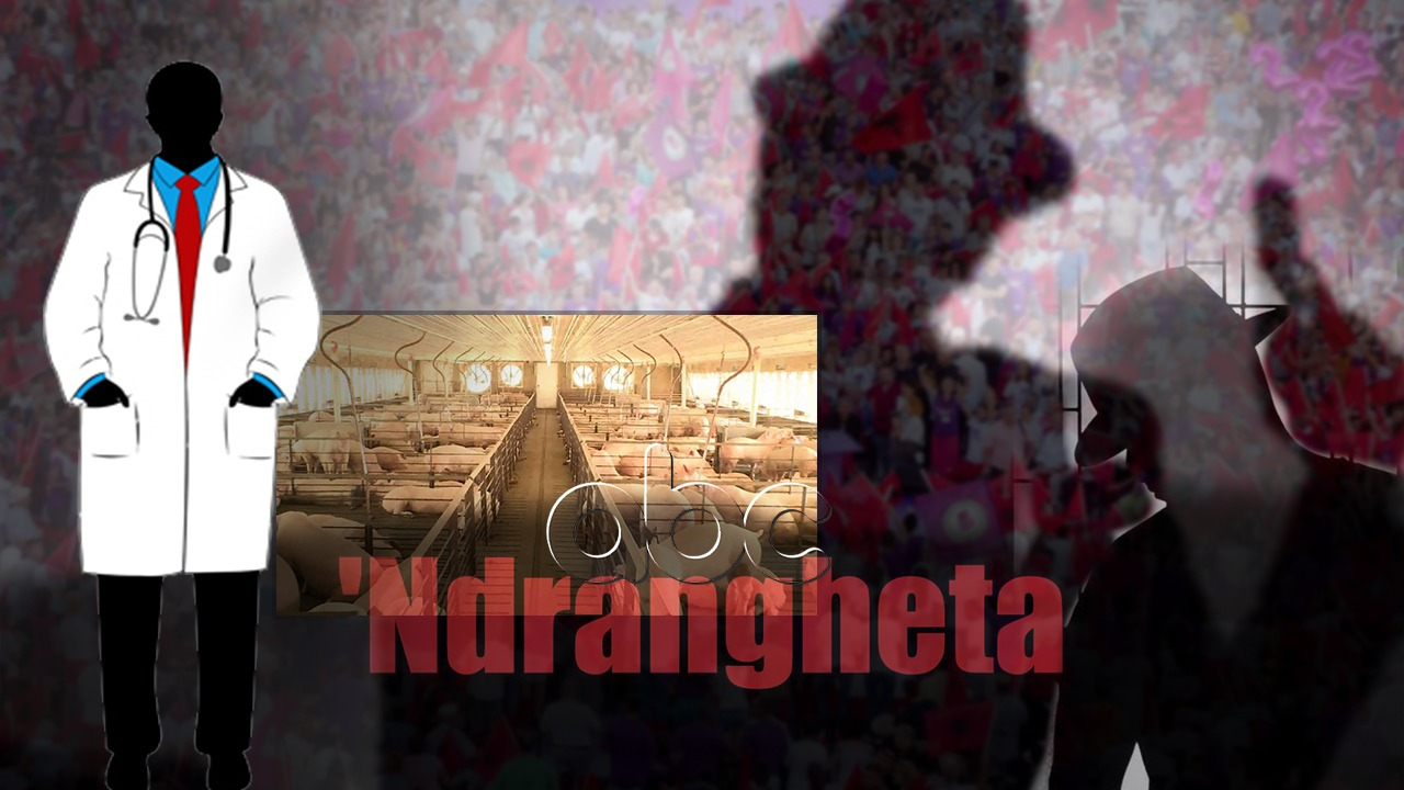 Përgjimet e Ndranghetas: Fitojnë miqtë tanë të PS, tiranasit s'janë ciganë si jugu dhe veriu. Kreu i veterinerëve shqiptarë na jep toka pafund