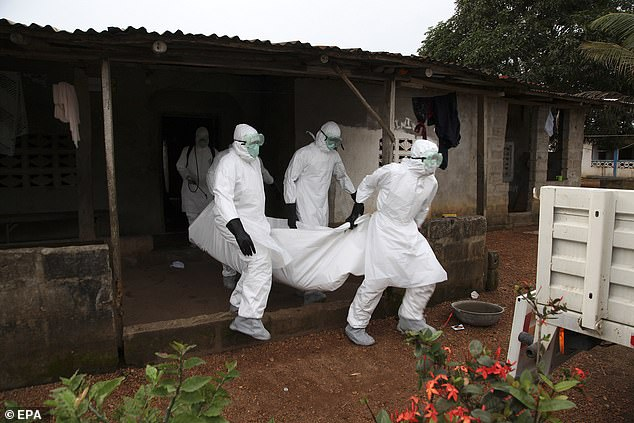 Rikthehet frikshëm Ebola, pesë të vdekur në Guinea