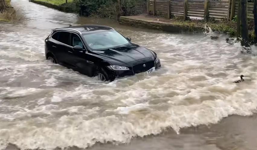 """Kur ke një super """"Jaguar"""", por nuk ke mend"""