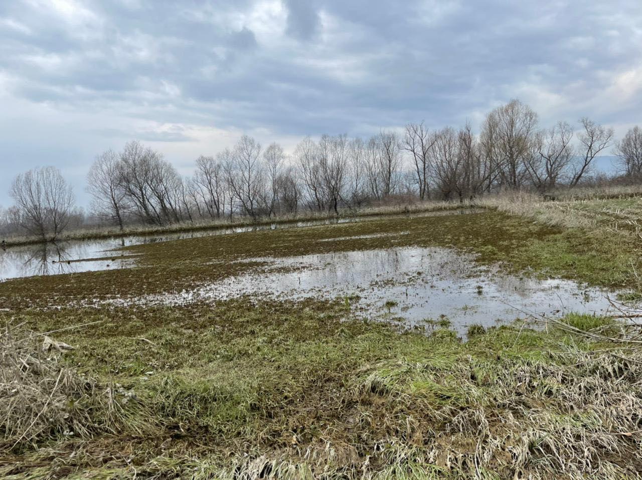 1625 sipërfaqe toke ende nën ujë, Bashkia e Shkodrës bën bilancin e përmbytjeve