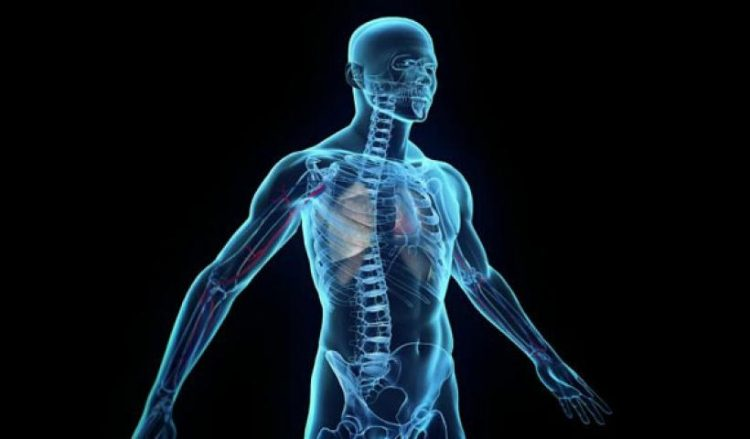 10 të vërteta të çuditshme për trupin e njeriut që mund të mos i dini