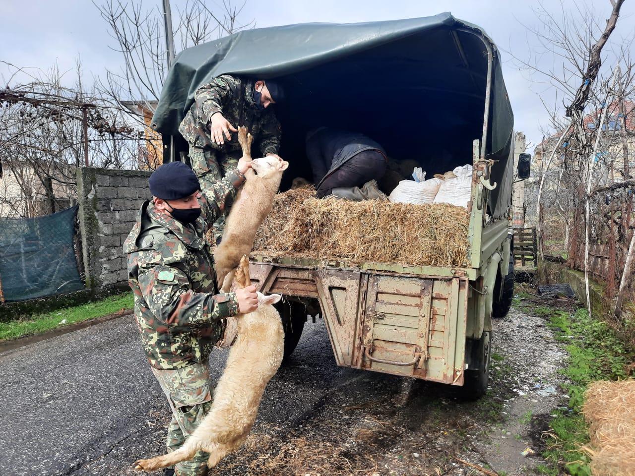 Përmbytjet, nis evakuimi urgjent në Shkodër