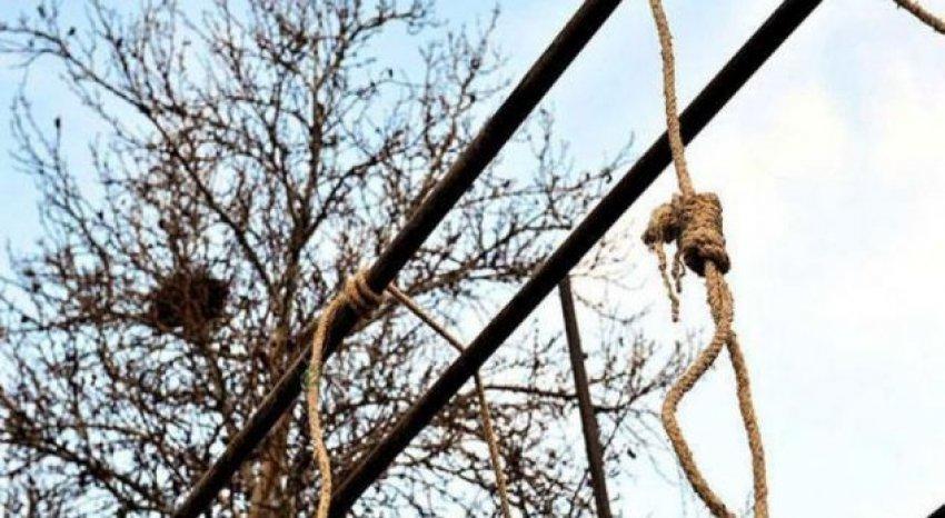 E rëndë vetëvaret në pemë 21 vjeçari në Tiranë