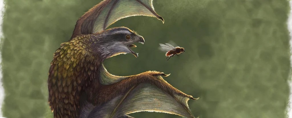 Zbulimi: Dinosaurët me krahë të vegjël kishin performancën më të keqe fluturuese sesa pulat