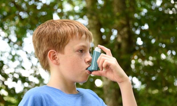 Kriza klimatike do ta bëjë alergjinë e sezonit 60% më të ashpër