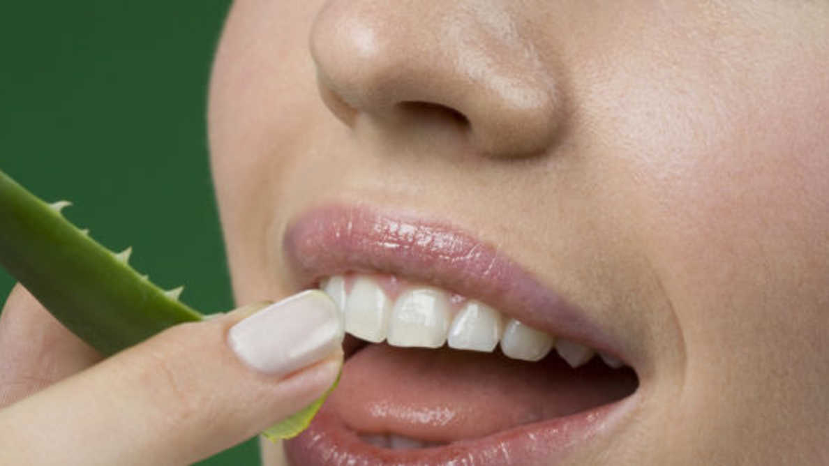 Keni probleme me mishrat e dhëmbëve? Përdorni aloe verën në këtë mënyrë