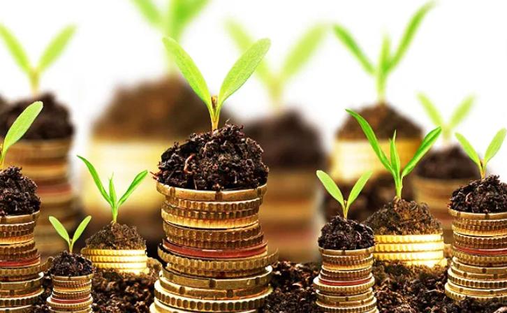 Më 24 mars nis aplikimi për shpërndarjen e fondeve për fermat, bizneset e bimëve medicinale e agroturizmit