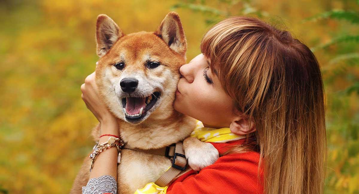 Pse duhet të ndaloni së puthuri kafshët tuaja shtëpiake