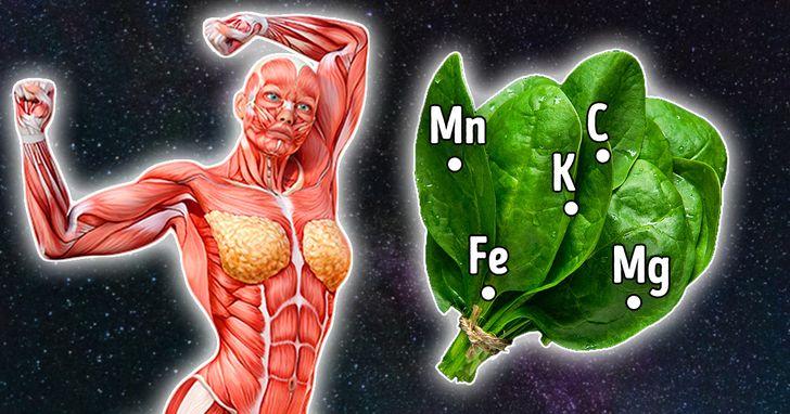 Këto janë përfitimet që merrni nga konsumi i spinaqit