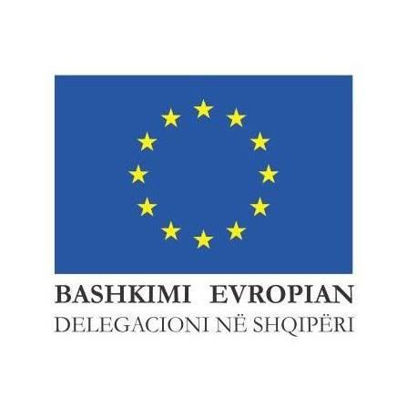 Delegacioni i BE-së për abuzimet seksuale në Shqipëri: Përdhunimi është krim dhe indiferenca vret