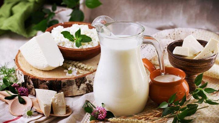 Pse duhet ta përfshini djathin e dhisë në dietën tuaj