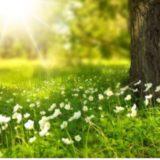 Kthjellime e vranësira të lehta, mësoni si do të ndryshojnë temperaturat gjatë ditës