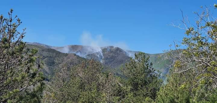 Zjarr në pyjet e Oroshit në Mirditë