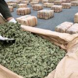Raporti i GI: Si funksionon trafiku i kanabisit, kokainës e heroinës në Ballkan, roli i Shqipërisë