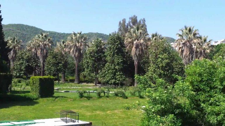 Kopshti Botanik i mbetet Universitetit, Gjykata Administrative rrëzon VKM që e kalonte tek Bashkia