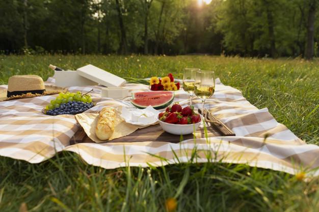 Katër gjërat që duhet të keni gjithmonë me vete në piknik