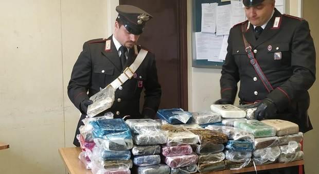 Kapet me 4 milion euro kokainë, pranga 24-vjeçarit shqiptar në Itali