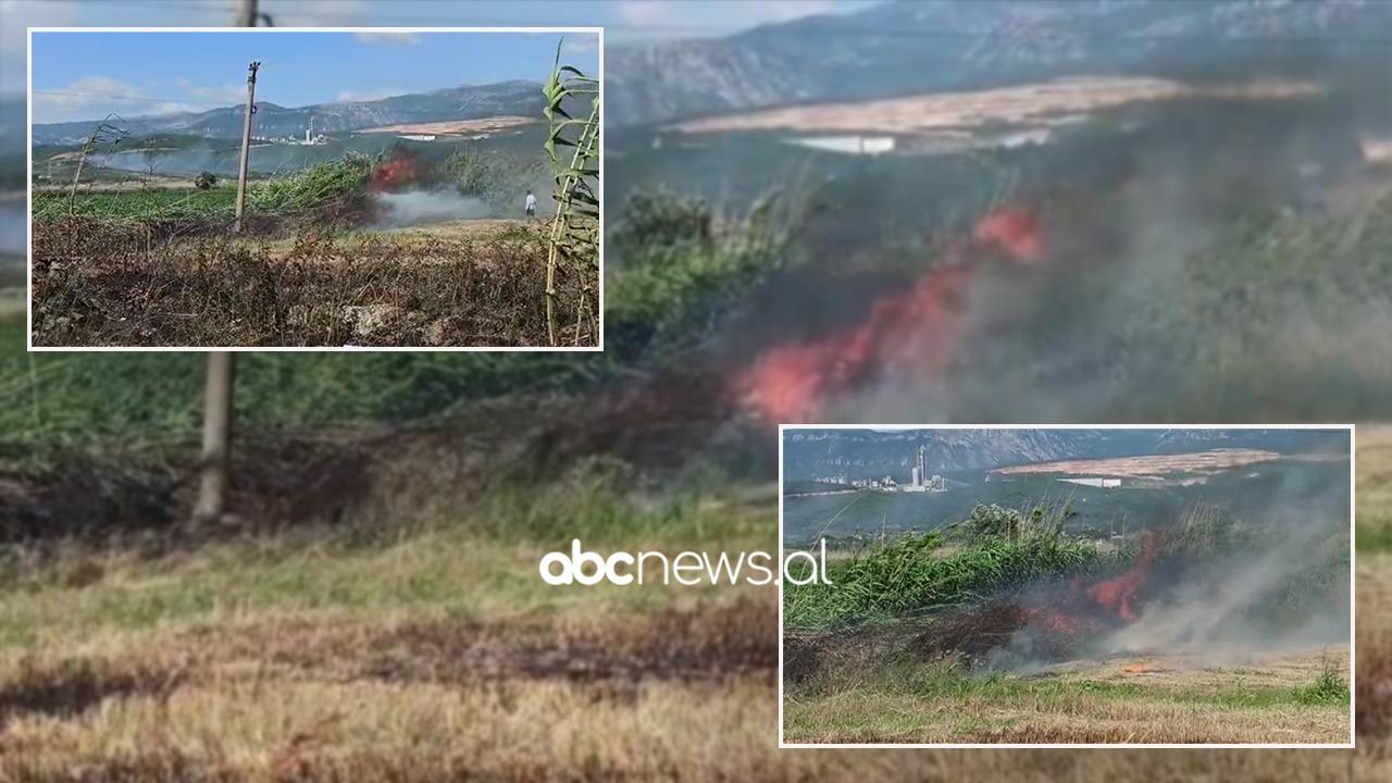 Zjarr në fshatin Borizanë të Krujës, era përhap flakët me shpejtësi
