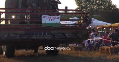 Festa e grurit, fermerët e Fierit ankohen për rënie të rendimentit