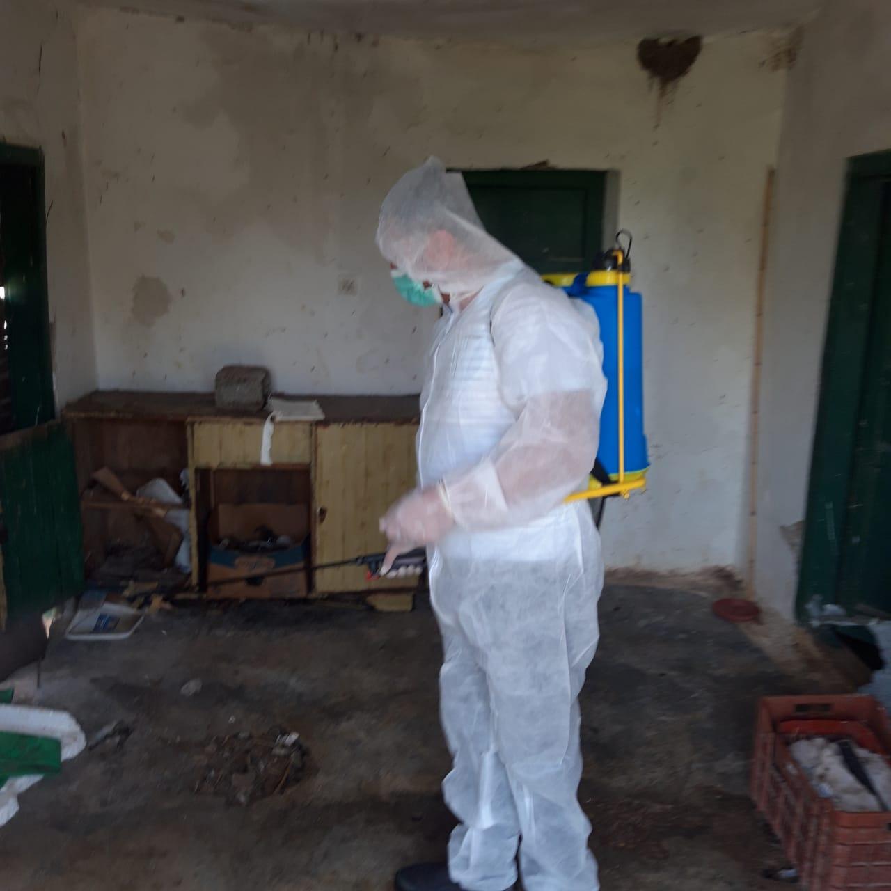 Gripi i shpendëve në Fier, nis dizinfektimi i ambientit dhe asgjësimi i pulave të ngordhur