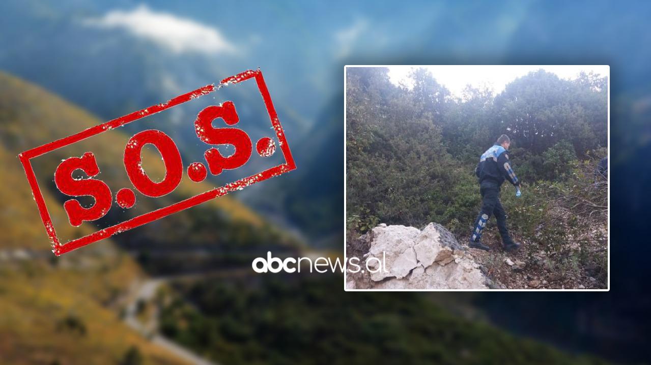 Humb çifti francez në pyllin e Llogaras, lëshojnë sinjalin SOS