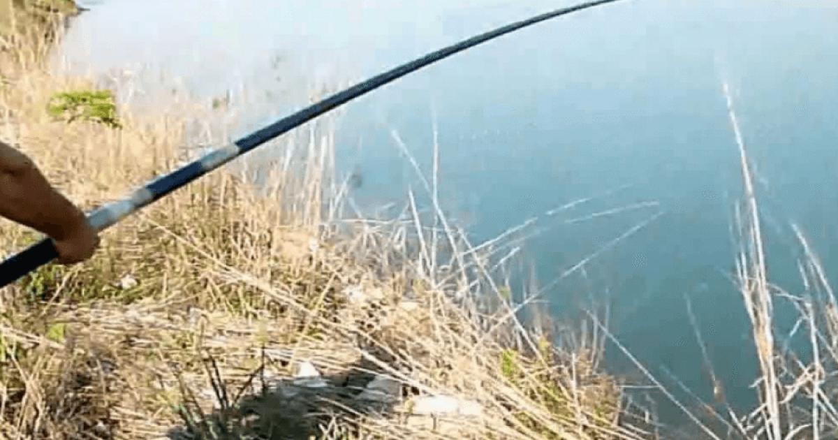 Po peshkonte në Erzen, 55-vjeçari në Durrës bie në kontakt me telat elektrik dhe ndërron jetë