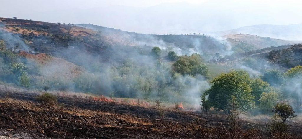 Zjarr në Cukal të Vaut të Dejës, Mbrojtja: Vatra problematike, po favorizohet nga erërat
